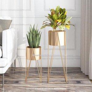 Modern Minimalist Living Room Flower Stand Floor-standing Nordic Plant Shelf Green Radish Flower Pot Stand Wrought Iron Rack