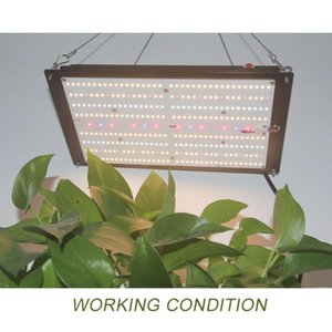 Meanwell Driver240W Samsung Board LM301H LM301B Full Spectrum Indoor Dimmable LED Grow Lights Lamps for Veg and Bloom