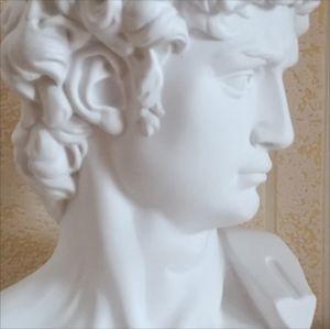 David Head Portraits Bust Gypsum Statue Michelangelo Buonarroti Sculpture Home Decor Craft Sketch Practice L1239 54 S2