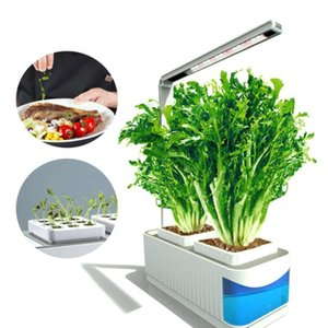 Hydroponic Plant Growth Light Indoor Gardening Planter Kit Led Bulb Growing System With Plant Grow Light Ac100-240v