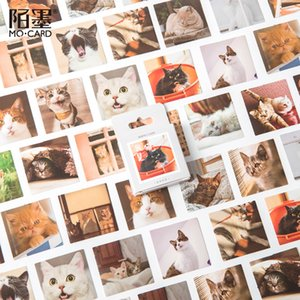 3Pieces Lot 45pcs box Lovely Cat Pet Animal Decorative Adhesive Tape Masking Tape For Stickers Scrapbooking DIY Stationery Tape