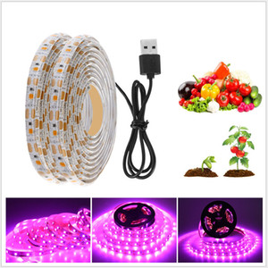 Full Spectrum LED Strip Light 5M LED Fitolampy Grow Lights 2835 Chip Led Grow Strip For Greenhouse Hydroponic plant