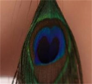 Pendientes de plumas de pavo real de lujo de estilo retro color de plumas Pendientes silvestres de moda 198 T2