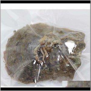 Akoya Pearl Pearl Oyster Ronda 6-7mm 25 colores Agua de mar Natural cultivado en la perla de la ostra fresca al por mayor G5MZE NTAY7