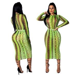 Star Model 2021 New Sexy Fashion Nightclub Super Elastic Screen Printed Dress