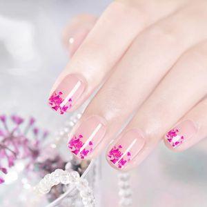 6colors Fleurs séchées naturelles Fée Gel Gel Polonais Diy Floral UV Gel Varnish Soignez-vous Fleur sèche Manucure Nail art Gel Colle 8ml