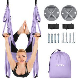 Luft Yoga fliegende Yoga Swing Yoga Hängematte Trapeze Sling Inversion Tool für Gymnastik Haus Fitness (mit Deckenankern)