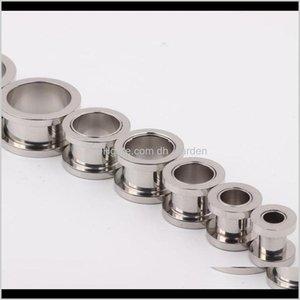 TÚNELLES TÚNELES 100 PCSLOT MIX 210MM JEHICA DE JESURENCIA DE ACERO DE ACERO INSERCIDO ENCHUFE FLESH TUNNEL Piercing Body Jewelry Zytbe 1orip