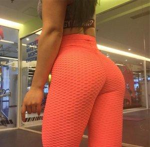 Summer Fond Yoga Fitness Pantalon Élasticité Taille Haute Abdomen Hips Sports Bra Femmes Grand Taille Mode Pantalon rapide