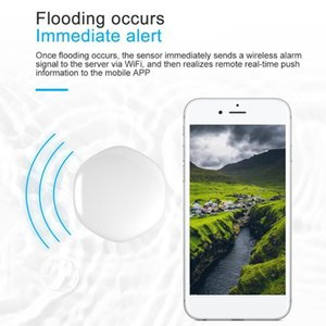Smart Home Control Water Immersion Sensor Remote Alarm IPX6 Waterproof Humidity Leak Soaking Security