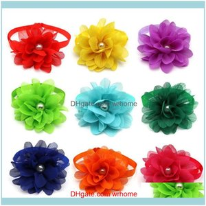 Other Supplies Retail Services Office School Business & Industrial50 Pcs Cat Pet Bowties Chiffon Flower Style Adjustable Puppy Bow Tie Neckt