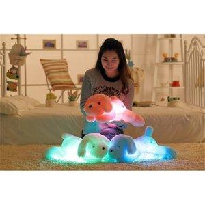 50cm leucht hund plüsch puppe bunte LED glowing hunde kinder spielzeug für mädchen kidz geburtstag geschenk