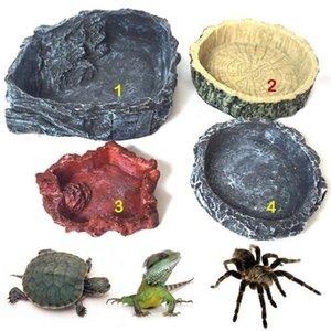 Plats à eau de tortue de la résine de reptiles pour amphibiens Gecko Snake Lizard