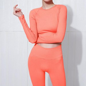 Wholesale sexuality yoga Knitting seamless sexy fitness clothes womens tight-fitting t-shirt autumn winter sports clothes reveh risper yoga