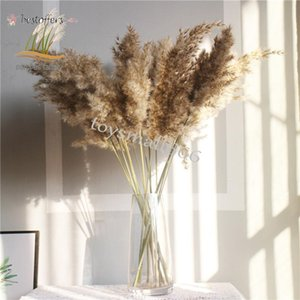 real pampas grass decor natural dried flowers plants wedding flowers dry flower bouquet fluffy lovely for holiday home decor FY2497