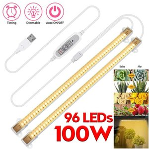 2Pcs 100W USB LED Grow Light Strips Full Spectrum Timer Warm Bars For Plants Phyto Lamp Phytolamp With Power Adapter Lights