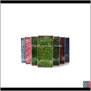 20G Simulation Plant Moss Fake Home Living Room Decorative Wall Landscape Diy 1 Jllkev Ji2Ro Ly6P4