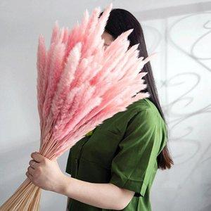 색상 자연 말린 꽃 작은 팜파스 잔디 phragmites 장식 홈 DIY 결혼식 식물 장식 인공 장식 화환