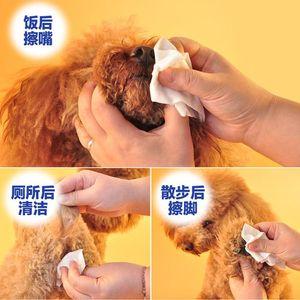 PET SAFT SAFT SPEAL DISINFECTANTE Toallitas para mascotas Dog Cat PUL PUP MILLO DESOLUCCIÓN DE BACTERIAS DE DETODORANTES LEATE LEAGE LLEGADOR