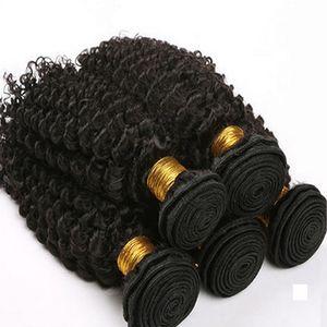 8A 섹시한 말레이시아 사람의 머리카락 직물, 인기 상품 여성용 패션 처리되지 않은 말레이시아 머리카락 바느질 확장 Kinky Curly Bundle Hair Wefts