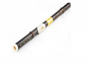 2016 monocouche soufflé F ton bawu bambou noir amovible ba wu instrument de musique cool