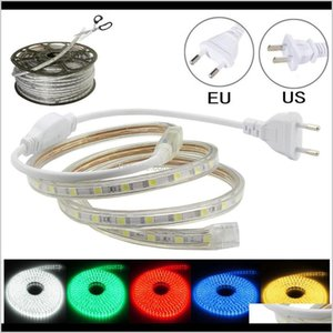 Activities 100M Strip Lights 220V110V Waterproof Led Rope Light For Home Christmas Decoration Outdoor Games Dda331 6Dzpt Lss5X