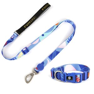 Elemento Forest Shade Element Dog Leashes e Collars Set Forniture per animali domestici Cucciolo di poliestere all'ingrosso con XS S m L.