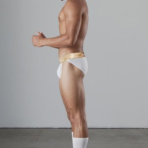 Brand Men Panties Breathable Cotton Sexy Gay Underwear Briefs Cuecas Low Waist U Pouch Sissy Lingerie Men's Underpants