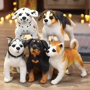 25cm imitation dog plush husky cute Akita Rottweiler toy children's Christmas giftGME5