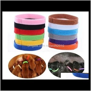 & Leashes Collar Identification Id Collars Band For Whelp Puppy Kitten Dog Pet Cat Veet Practical 12 Colors Wholesale 9S6Lw Hlerx