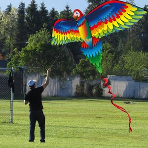 Fantastic 3D Parrot Kite Single Line Flying Kites with Tail and Handle for Adult and Kid Classical Outdoor Sport
