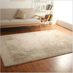 Coral Velvet Carpets Modern Simple Living Decoration Short Plush Thicker Carpet Children Room Play Crawling Mat Balcony Rug