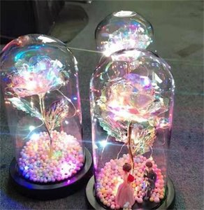 2020 LED Enchanted Galaxy Rose Eternal 24K Gold Foil Flower With Fairy String Lights In Dome For Christmas Valentine's Day Gift 204 V2