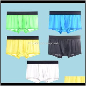 Apparel Drop Delivery 2021 5Pcs Mesh Shorts Underwear Cool Ice Silk Mens Boxer Underpants Super Breathable Men Sexy Slim Man Panties Transpar