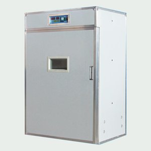 Egg Incubator Fully Automatic Household Small Machine Constant Temperature Intelligent Equipment Bread Makers