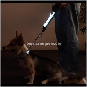 Collars Leashes Pet Supplies Bright Dog Collar Light Night Safety Sports Cat Increased Visibility Leash Accessories Led Flashing Outdo Evrpy