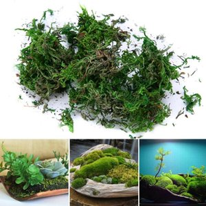 Creative Dried Artificial Moss Bonsai Lining Decor Flower Hanging Baskets Gardening Crafts Wedding Home Garden Decoration