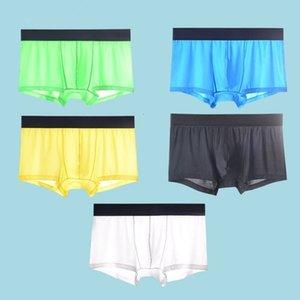 5pcs Mesh Boxer Shorts Underwear Cool Ice Silk Men's Boxer Underpants Super Breathable Men Sexy Slim Man Panties Transparent