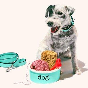 Ti ff any & c o. Travel Camp Dog Cat Feeding Bowl Pet Water Dish Feeder Pot Ceramic Robin Blue Girlfriend Gift