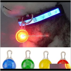 Collars Leashes Supplies Home Garden Drop Delivery 2021 Pet Dog Cat Flashing Bright Safety Led Security Necklace Night Light Collar Pendant E