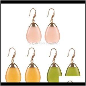 & Delivery 2021 Diy Elliptical Resin Elegant Chandelier Dangle Drop Earrings For Women Fashion Jewelry Gift Lz1000 Tchb5