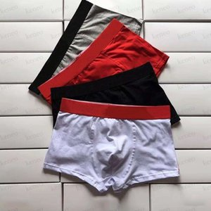 Men Shorts Underpants Man Mature Panties Boy Underwear for Male Sexy Large Size Summer High Quality Fashion Letter Print Everyday Pants