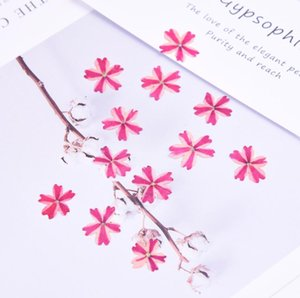 120pcs Multicolor Pressed Dried Flower Cherry blossoms Filler For Epoxy Resin Jewelry Making Postcard Frame Phone Case Craft DIY