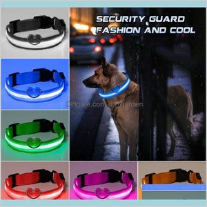 Leashes Supplies Home Garden Fashion Led Nylon Collar Dog Cat Harness Flashing Light Up Night Safety Pet Collars Multi Color Xsxl Size