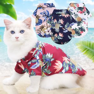 Cat Spring and Autumn Mediterranean Beach Pineapple Cocoa Shirt Hawaii Parm Dog Blue Cat Spring and Sweater