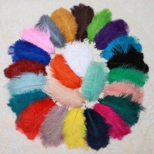 Ostrich Feather 1 pack 100 pcs 15-20cm Festival Feather Wedding Decoration Party Table Decoration 12 Colors Feather Craft Supply 1410 V2