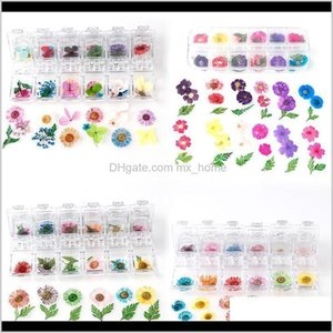 Flowers 1 Box Dried Daisy Cherry Blossoms Real Material Flower For Pendant Necklace Jewelry Making Craft Phone Case Diy Nail Acc Jllmy Le5D9
