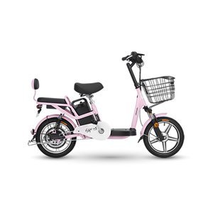 16 Inch Electric Bike 48V 25 Km h Lithium Battery High-Carbon Steel Bicycle