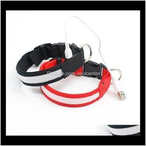 Tasmalar Pet Ev Bahçe Bırak Teslimat 2021 Malzemeleri USB LED Köpek Tasmaları Dokuma Şarj Edilebilir Pil 3 Boyutları 6 Renkler Jnyvm