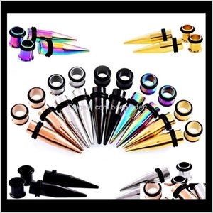 Body Jewelry Drop Delivery 2021 Gauges Stretching Kit Stainless Steel Ear Plugs Tunnels Flesh Tapers Stretcher Taper Set Dilataciones Qzelt